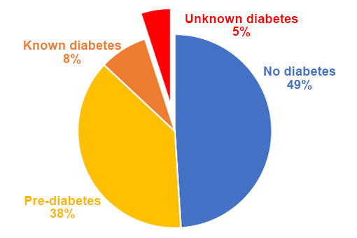 Mil Familias | Santa Barbara diabetes rates chart